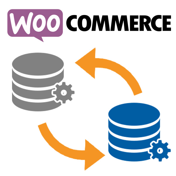 Import eCommerce products from another eCommerce into WooCommerce - Tutorial