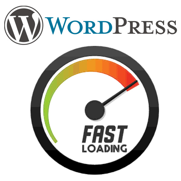 Speed Up WordPress with Caching and Optimization