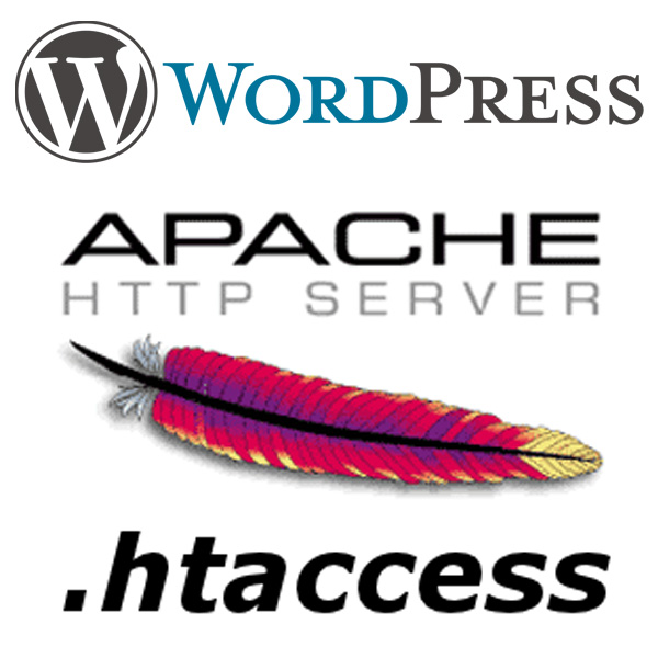 WordPress .htaccess Basics Site Security